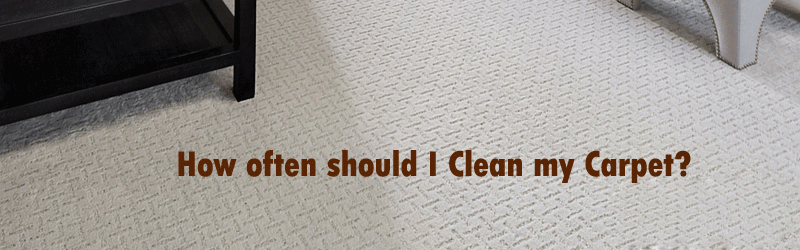 How often should I clean my carpets image