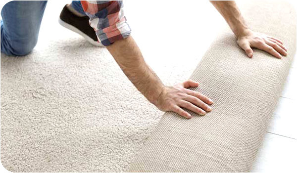 How to keep carpets neat and new image