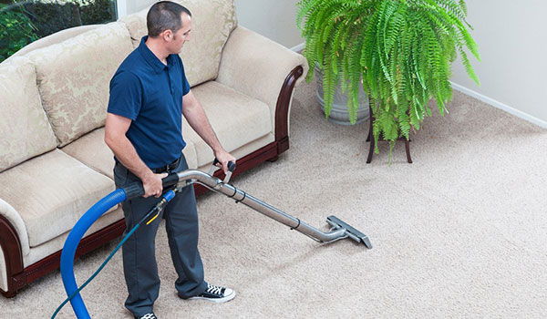 How to clean carpet with Carpet Cleaner image