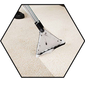 How to use a Carpet Shampooer image