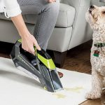 Best Carpet Cleaner For Pets image