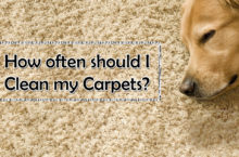 How often we should Clean Carpets? – Reasons | How to Clean a Carpet Cleaner?
