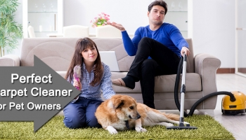 How to Choose a perfect Carpet Cleaner for Pet Stains, Hair Removal?