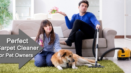 How to Choose a best Carpet Cleaner for Pet Stains, Hair Removal?